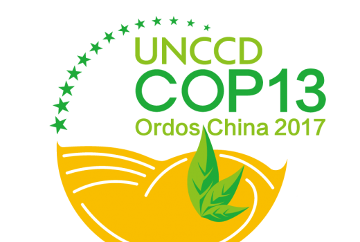 UNCCD COP 13 Adopts 37 Decisions, Links LDN to Emerging Issues
